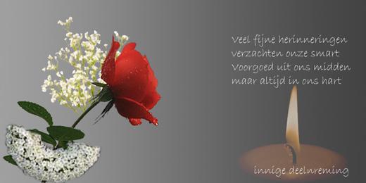 innige deelneming. – sint-pieters-roos